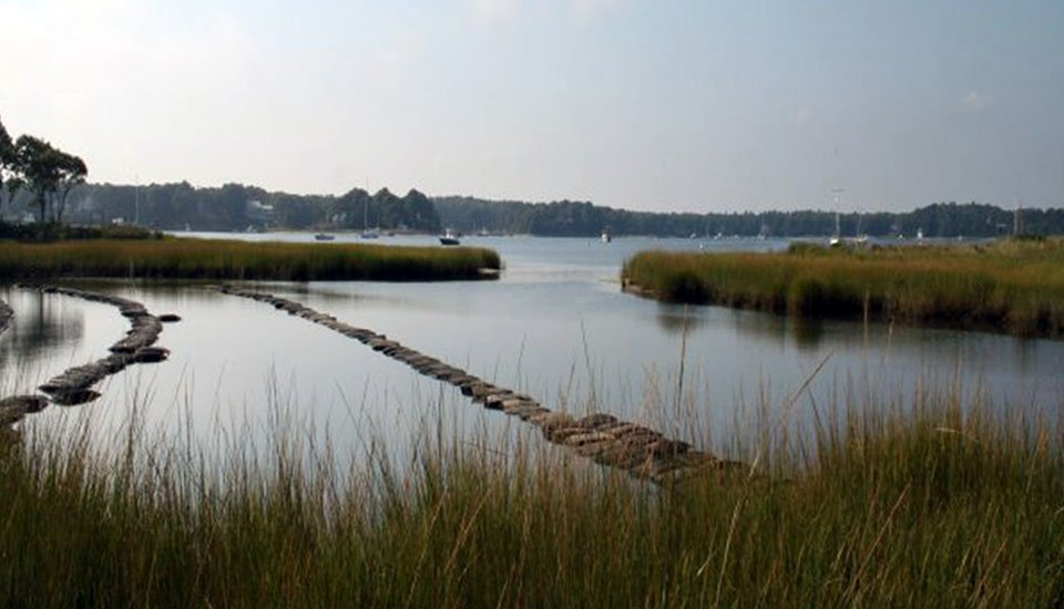 Wianno oyster beds
