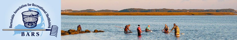 Barnstable Association for Recreational Shellfishing