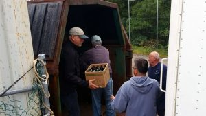 Andy Newman, George Lloyd, John Ferrine, Steve Hoxie transferring bottles and cans from container to truck.