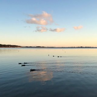 Cotuit Harbor from Ropes Beach