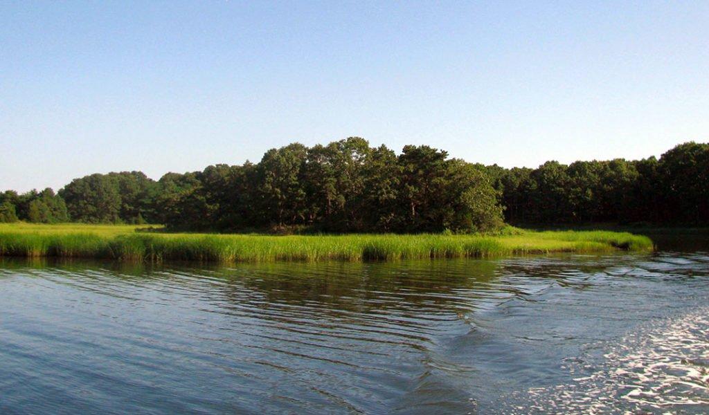 Marstons Mills River