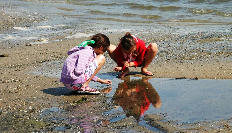 Clamming for Kids