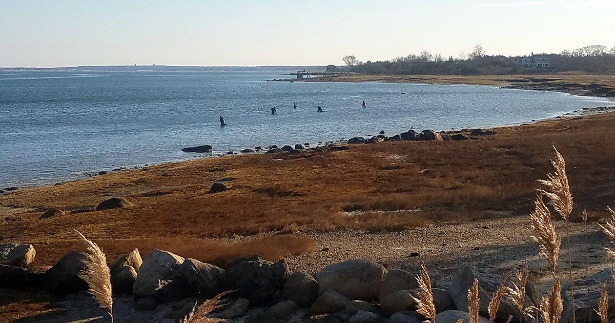 Shudder's Lane shellfishermen